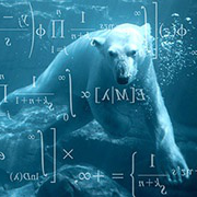 polar bear and logic equations
